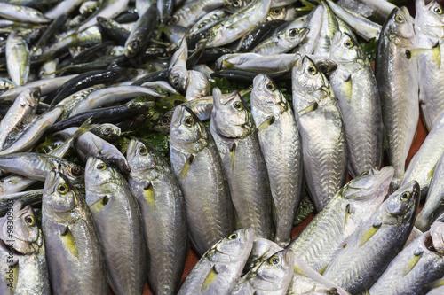 Fotografija  Fish market, Galata waterfront, Istanbul