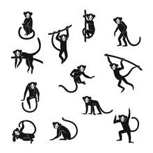 Funny Monkeys Set