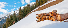 Stack Of Wood In The Snow In W...
