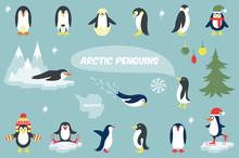 Various Penguins Cartoon Vecto...