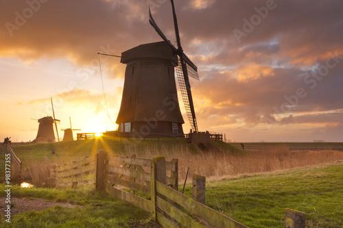 Fototapeta Traditional Dutch windmills at sunrise in The Netherlands obraz na płótnie