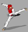 Taekwondo. Matial art