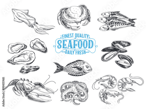 Photo  Vector hand drawn illustration with seafood.