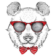 Panel Szklany Panda Image Portrait panda in the cravat and with glasses. Hand draw vector illustration.