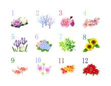 12か月季節の植物