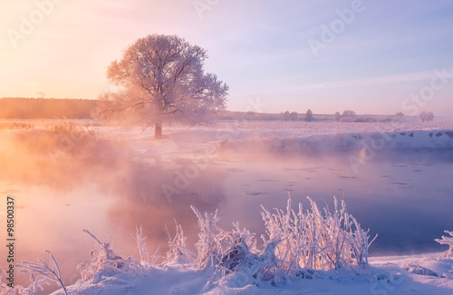 In de dag Ochtendgloren Foggy winter sunrise