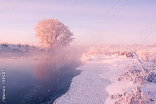 Spoed Foto op Canvas Purper Foggy winter sunrise