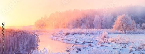 In de dag Ochtendgloren Frosty winter trees illuminated by the rising sun