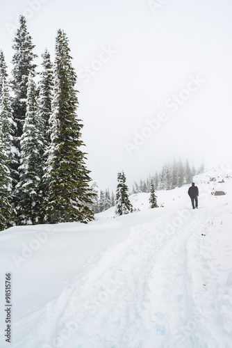 Fotobehang a man stand facing the snow mountain on a path cover with snow in paradise area,mt Rainier, national park,Washington,USA.