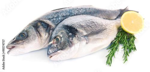 Acrylic Prints Fish Fresh fish with lemon and rosemary isolated on white background