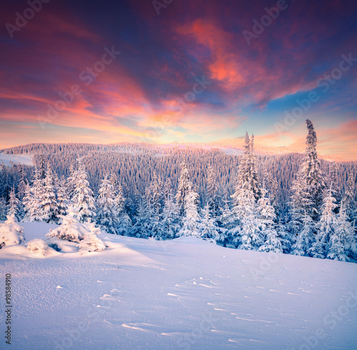 Tuinposter Crimson Colorful winter sunset in the Carpathian mountains