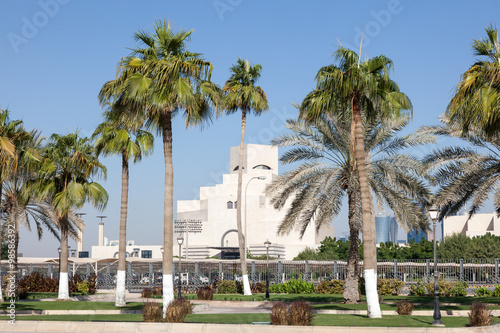Staande foto Buenos Aires Palm Trees at the Corniche in Doha, Qatar