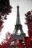 Fototapeta Wieża Eiffla - infrared photography Eiffel Tower
