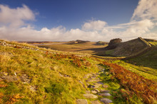 Hadrian's Wall, Near Housesteads Fort In Early Morning Light