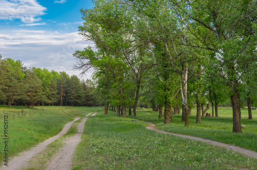 Spring landscape with earth road and path in central Ukraine