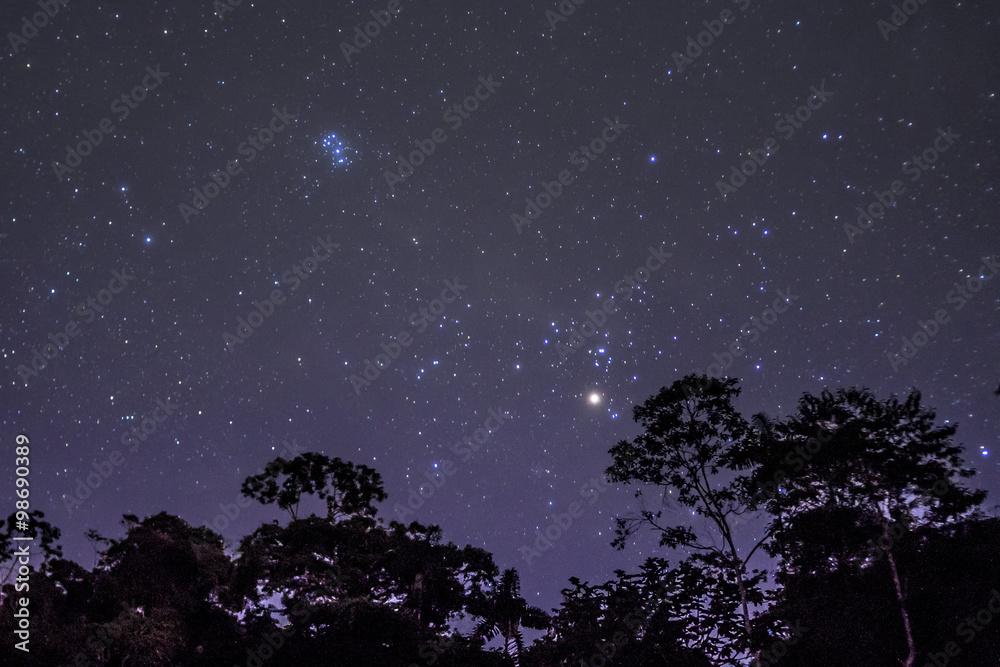 Fototapety, obrazy: noche de estrellas