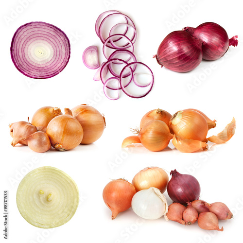 Onions Collection Isolated on White Fototapeta