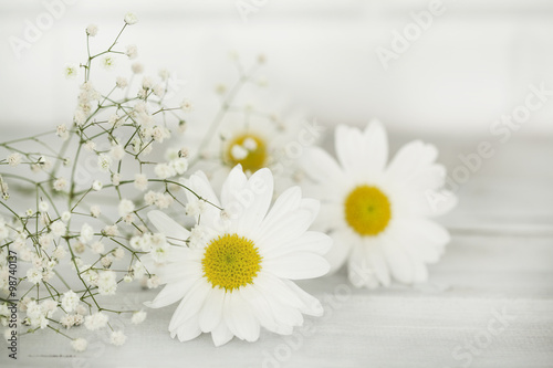 Foto op Canvas Madeliefjes Daisy flower on wooden background