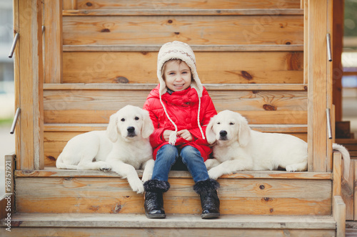 Fototapety, obrazy: A little girl with two puppy Golden Retriever.