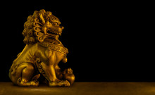 Chinese Lion Isolated On Black Background Include Vector Path