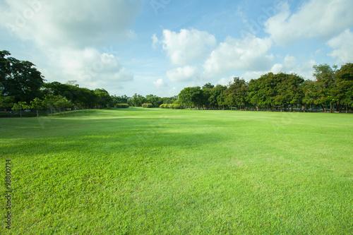 Papiers peints Jardin beautiful morning light in public park with green grass field an