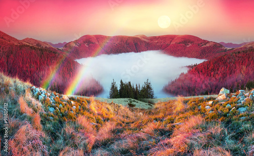 Canvas Prints Crimson Fog in the autumn