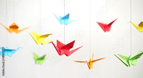 Photo origami birds