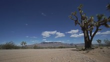 Scenes Of A Roadside In The Desert