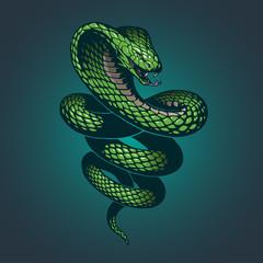 Ilustracija zmije