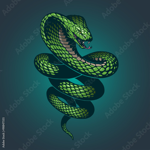 Snake illustration Canvas Print