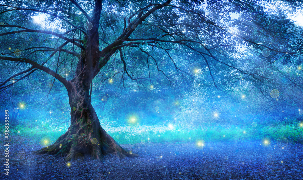 Fototapeta Fairy Tree In Mystic Forest