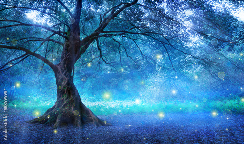 Canvas Print Fairy Tree In Mystic Forest