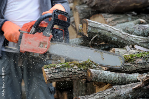 Chainsaw and tree #98886574