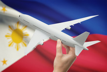 Airplane In Hand With Flag On ...