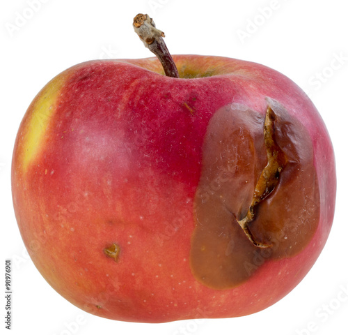 Valokuva  Red rotten apple isolated on white background