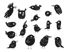 Birds Silhouettes Set, Vector ...