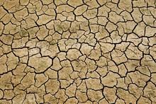 乾燥した地面の割れ目