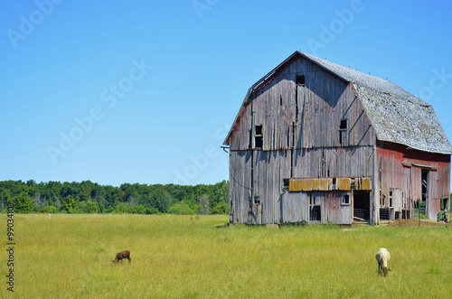 Fotografía  Rural barn with livestock and farmland