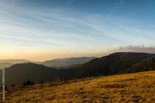 Foto op Plexiglas Zuid Afrika Schwarzwald - Sonnenuntergang