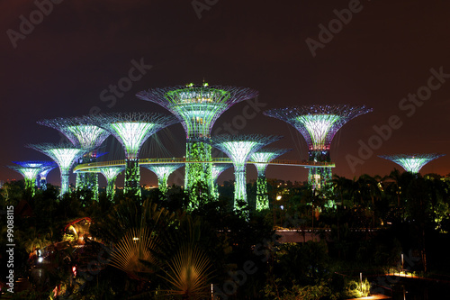 Plagát  Gardens by the Bay in Singapore by night