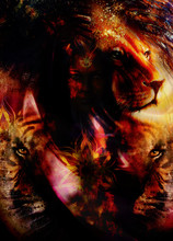 Portrait Lion And Tiger Face, Profile Portrait, On Colorful Abstract Feather  Background. Abstract Color Collage With Spots..