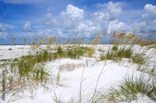 фотография  ANNA MARIA ISLAND BEACH