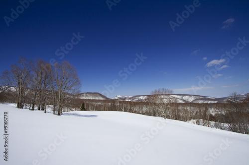 Fotografie, Obraz  雪原と青空