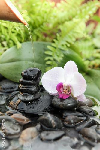 Naklejka na drzwi Orchidée blanche