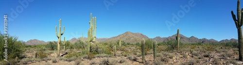 Deurstickers Arizona Arizona Desert Mountain Landscape