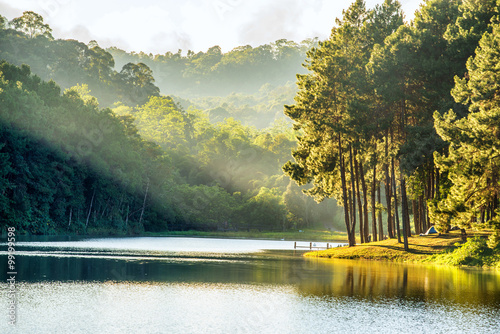 Canvas Prints Honey pang ung , reflection of pine tree in a lake , meahongson , Thai