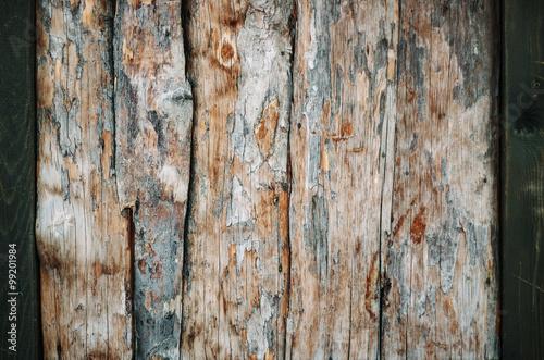 Canvas Prints Textures Wood background