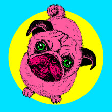 Pug Dog Pop Art, Vector Hand Drawn Sketch With Cute Domestic Animal