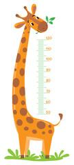 NaklejkaGiraffe meter wall