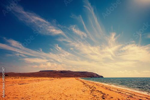 Foto op Aluminium Nachtblauw Wild deserted beach with cloudy sky